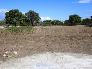 Land Purchased for Love Orphanage